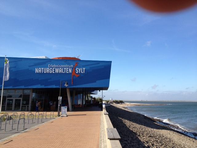 Webcam: Livebilder auf das Wattenmeer vor List